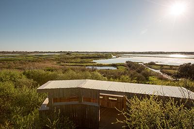 Observatoire aux oiseaux - Copyright Simon Bourcier - Vendée Expansion