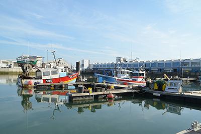 Port de pêche - copyright CCI Vendée